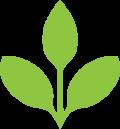 plant_icon-04